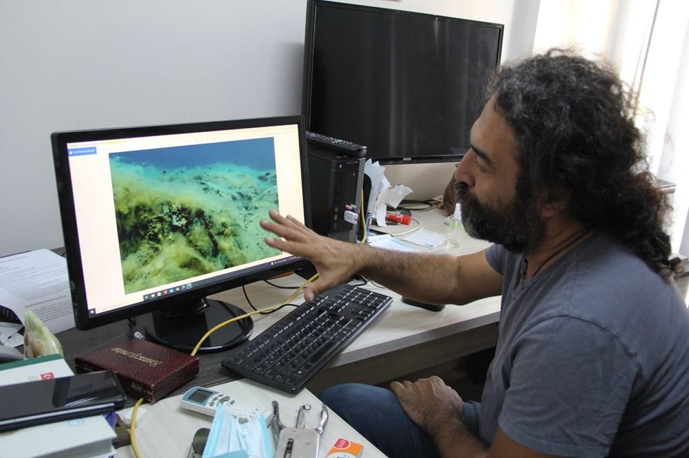 Mersin sahilleri müsilaj tehlikesi altında - 4