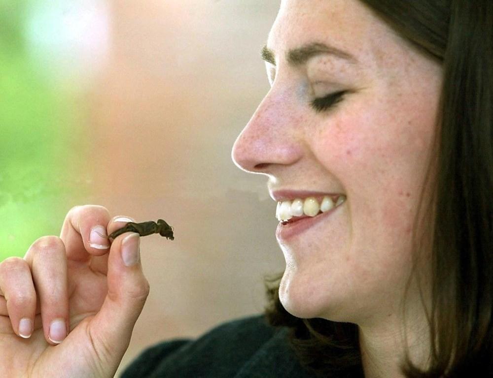 Yenilebilir böcekler yakında süpermarketlerde: Gıda firması aromalı çekirge şekerlemeleri üretti - 4