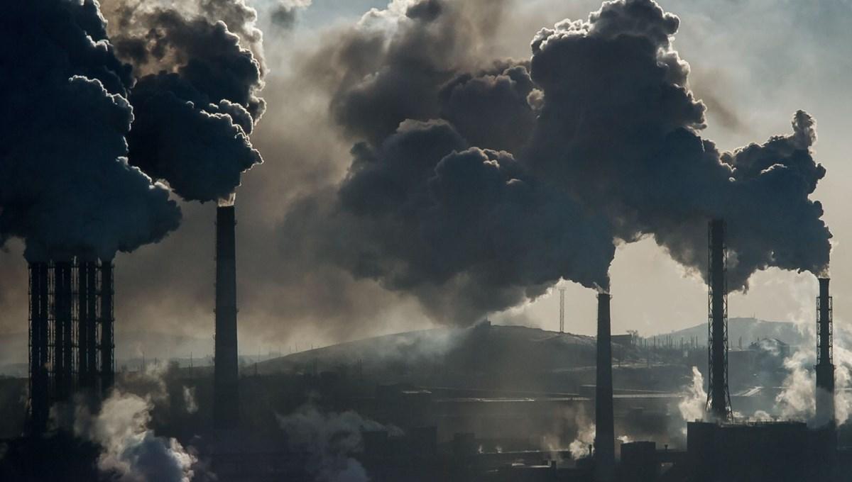 Yeni araştırma: Çevreyi kirletmemiz Sanayi Devrimi'nin öncesine dayanıyor