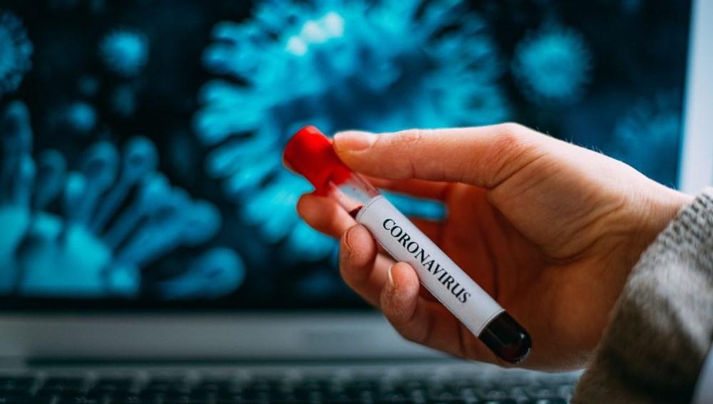 Corona virüse karşı en riskli kan grubu belirlendi - 4