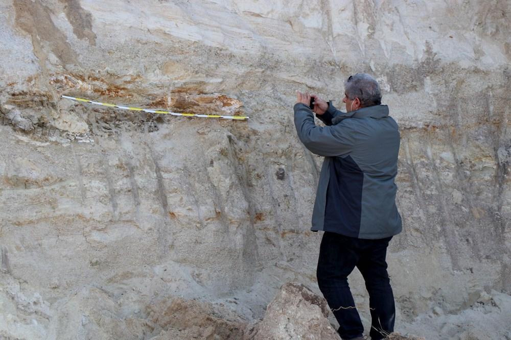 Edirne'de 8 milyon yıllık mamut fosilleri bulundu - 4
