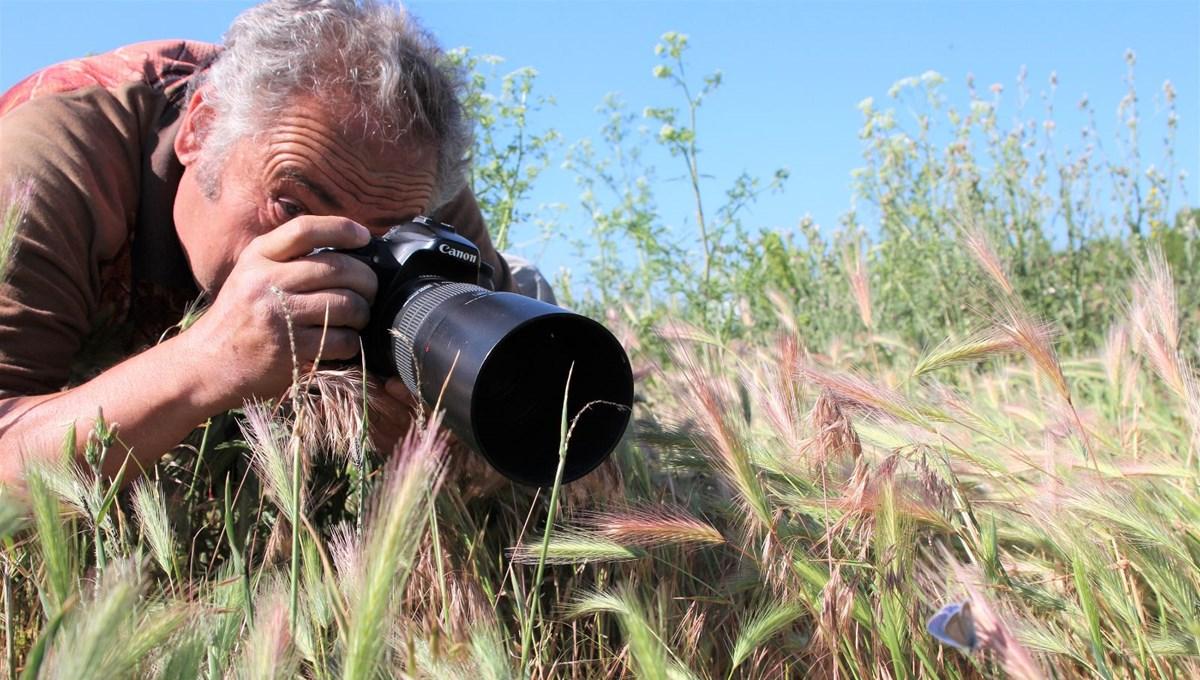 Doğa fotoğrafçılarının gözdesi: Beyşehir Gölü ve çevresinde 167 tür kelebek yaşıyor