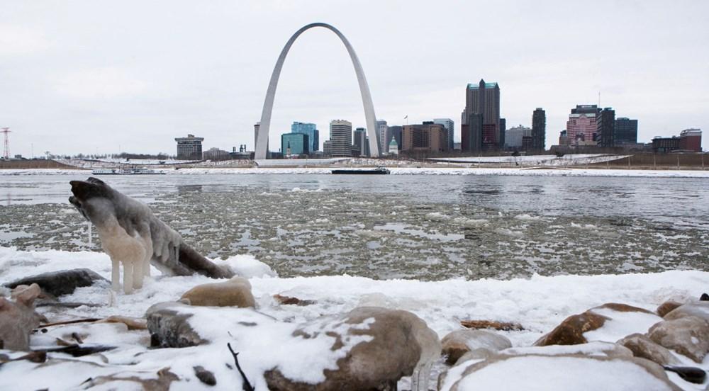 ABD'de kutup soğuklarıyla mücadele: 20 kişi yaşamını yitirdi - 13