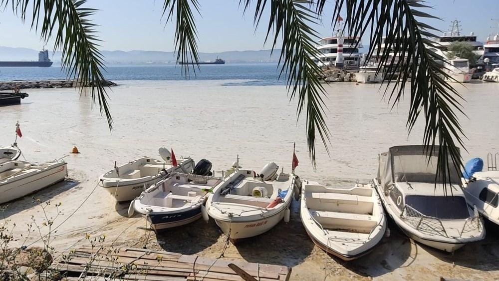 Deniz salyası ağları duman etti: Balıkçılık bitti - 7