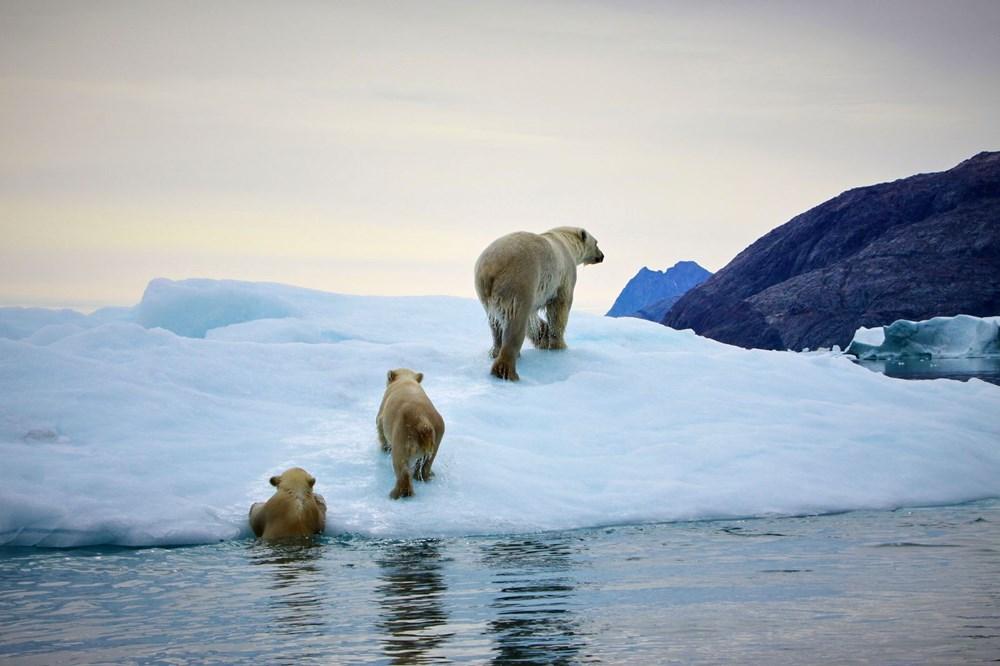 Grönland yok oluşa adım adım yaklaşıyor: Erime durdurulamaz seviyede - 6