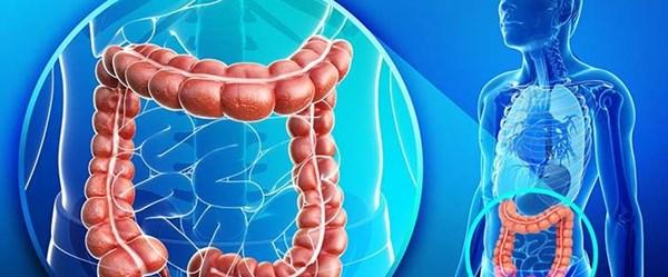 Mikrobiyota teşhis edilemeyen hastalıkların nedeni olabilir!
