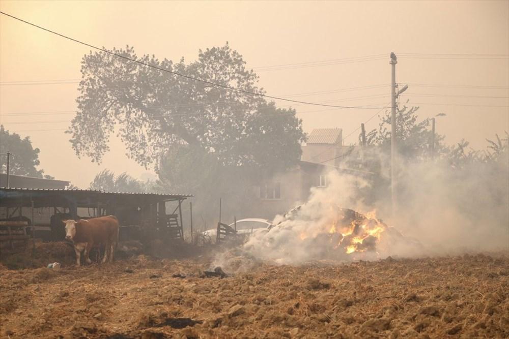 Antalya Manavgat'ta felaketin boyutu gün ağarınca ortaya çıktı - 3