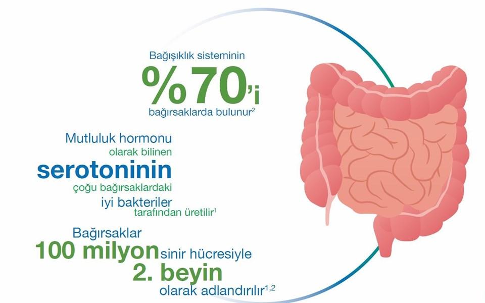 Mutluluk hormonu olarak bilinen serotoninin çoğu bağırsaklardaki iyi bakteriler tarafından üretiliyor.