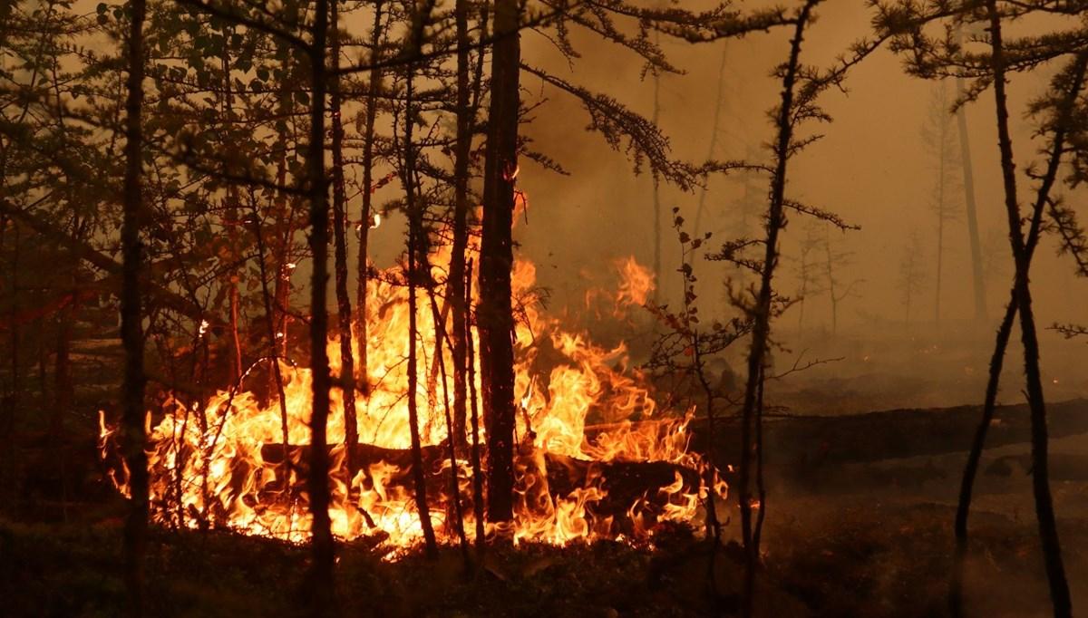 Sibirya alev alev yanıyor: 2 binden fazla itfaiyeci müdahale ediyor