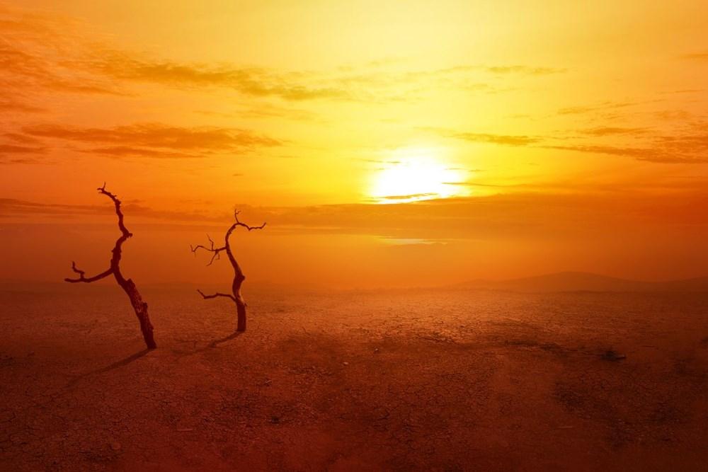 Güney Avrupa aşırı sıcaklarla mücadele ediyor: 45 dereceye ulaştı - 7