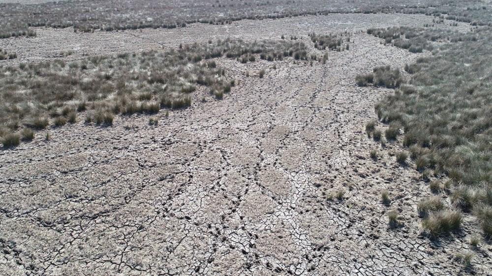 Kızılırmak Deltası'nda kuraklık tehlikesi - 2