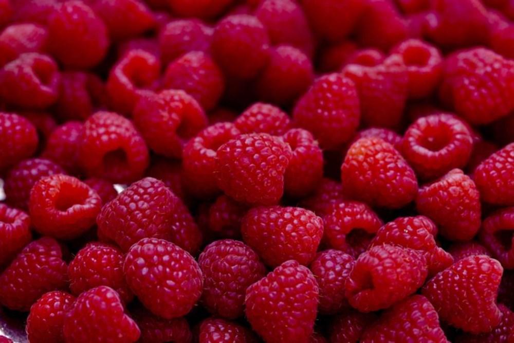 Bağışıklık sistemini güçlendiren besinler (50 sağlıklı besin) - 5