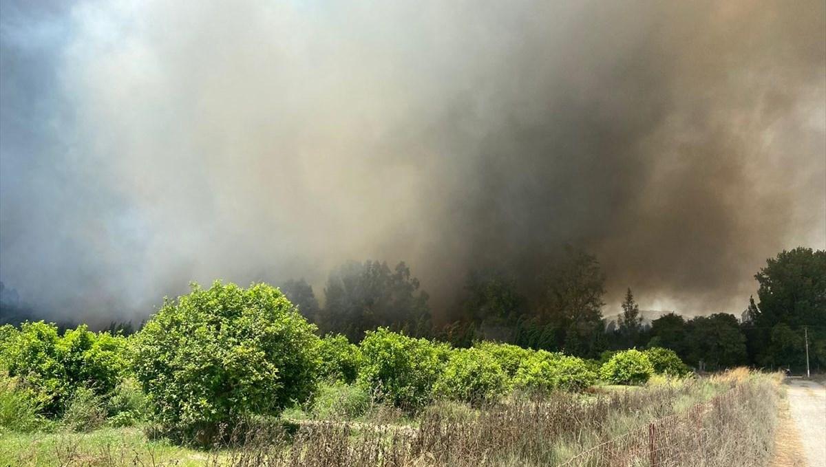 Muğla'da plastik atık deposunda çıkan yangın ormana sıçradı