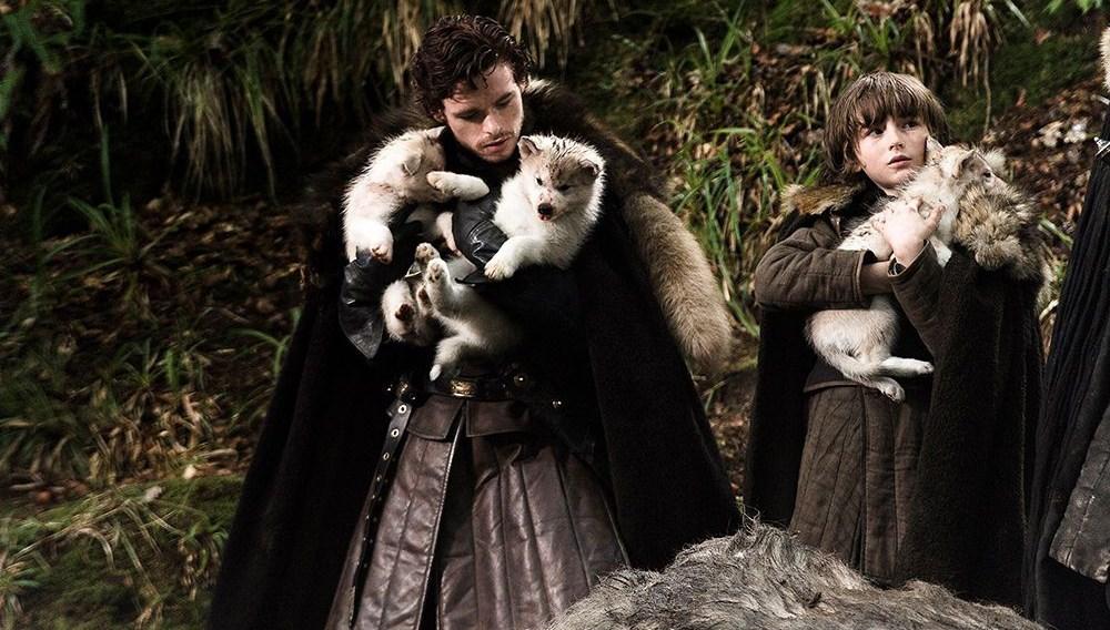 Game of Thrones'ta Bran'in köpeği Summer kansere yenik düştü