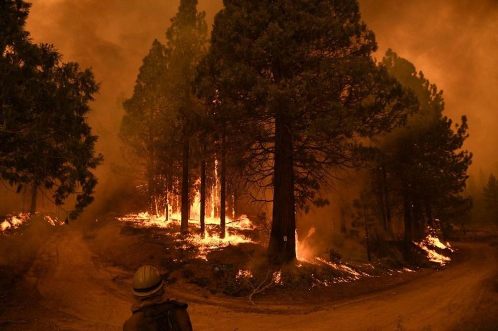 Küresel ısınmaya ilişkin çarpıcı araştırma: 40 yaşın altındakiler felaketlerle dolu bir hayata hazır olmalı - 4