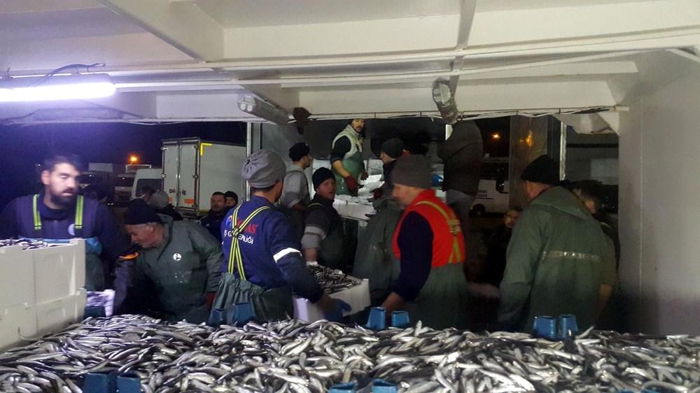 Balıkçılardan hamsi avının serbest olduğu İğneada'ya akın - 9