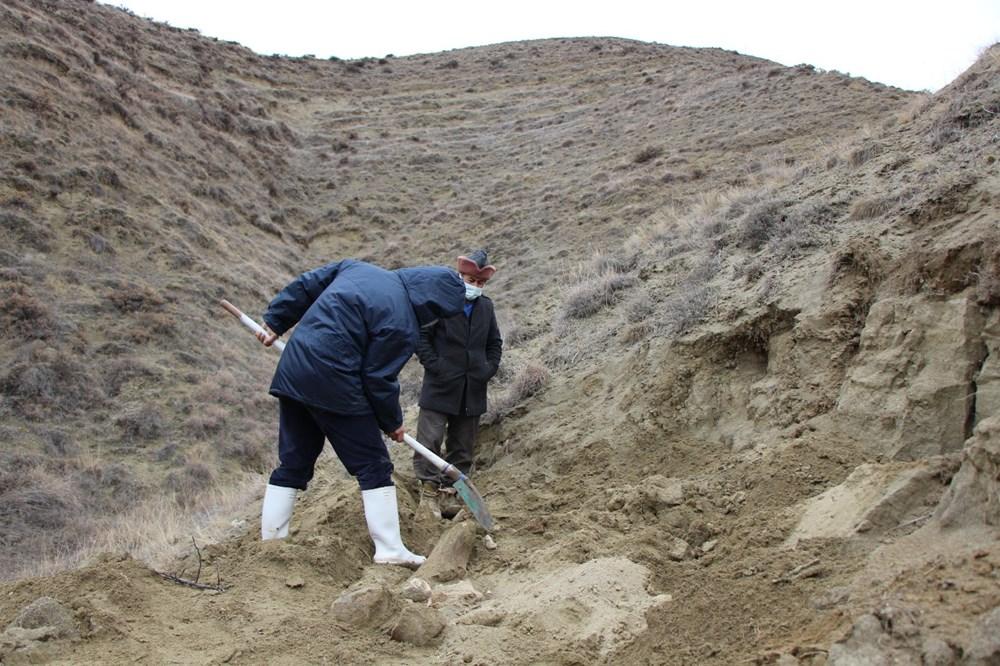 Amasya'da bulunan cisimler için mamut fosili heyecanı - 8