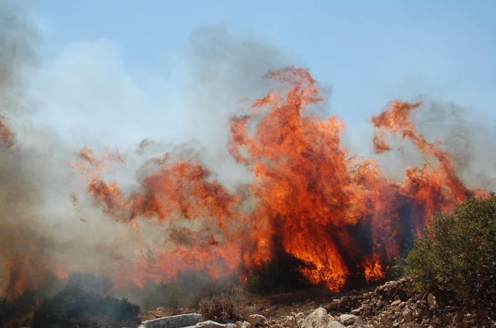 Antalya, Adana, Mersin, Aydın, Muğla, Osmaniye, Kayseri ve Manisa'da orman yangınları - 30
