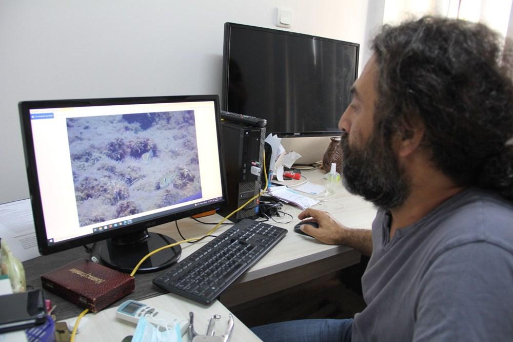 Mersin sahilleri müsilaj tehlikesi altında - 5