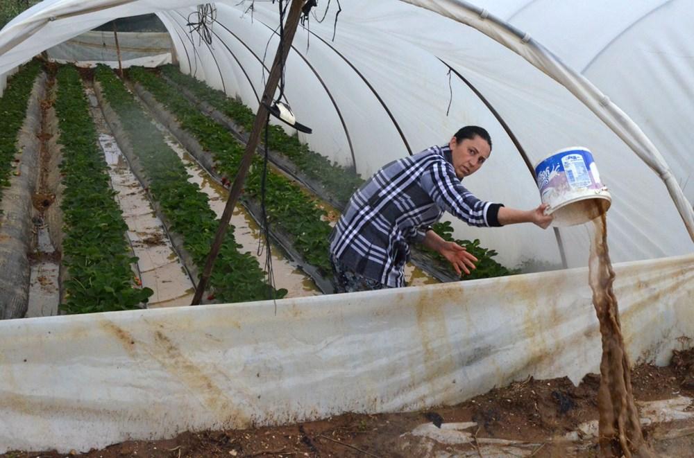 Antalya'da sağanak: Tarım alanları su altında kaldı - 3