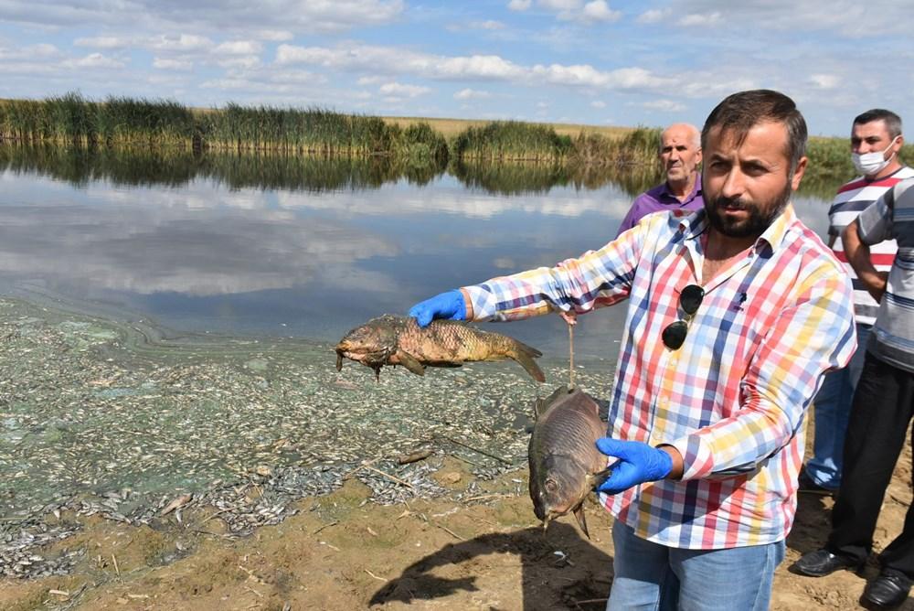 Gölette binlerce balık öldü: Kirleten işletmeye 96 bin lira ceza kesildi - 13