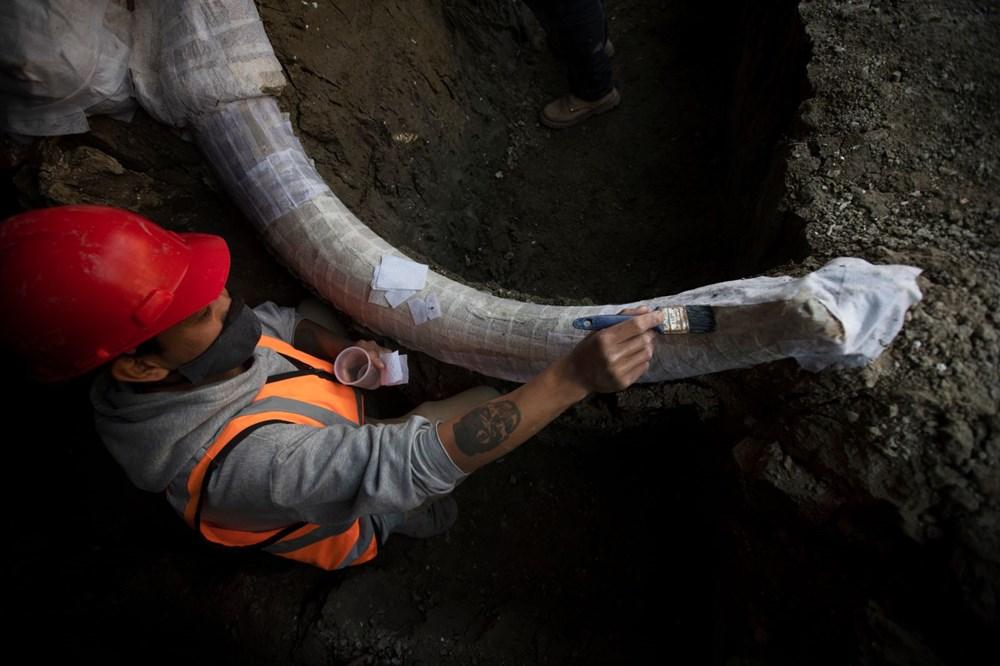 Meksika'daki sit alanında bulunan mamut fosillerinin sayısı 200'e yükseldi - 11