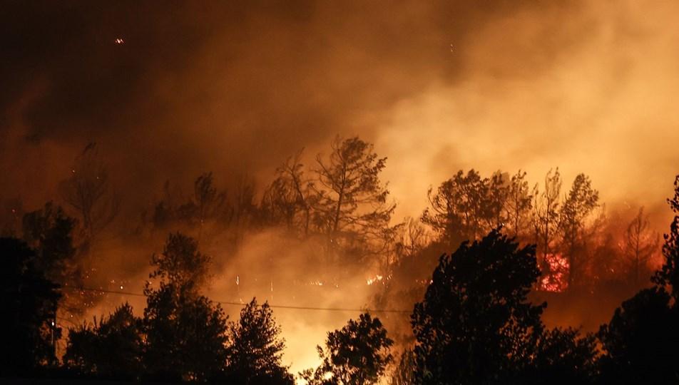 Manavgat'taki yangın evleri kül etti   NTV