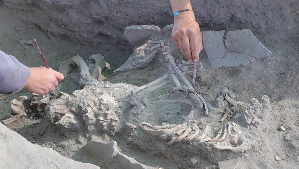 Anadolu'da şehirleşmenin başladığı ilk yer: 5 bin yıllık 40'tan fazla mezar ortaya çıkarıldı