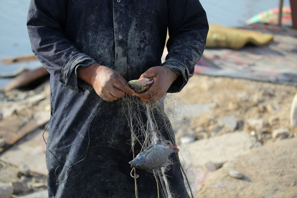Necef Denizi: Kuraklığın ardından gelen mucize - 19