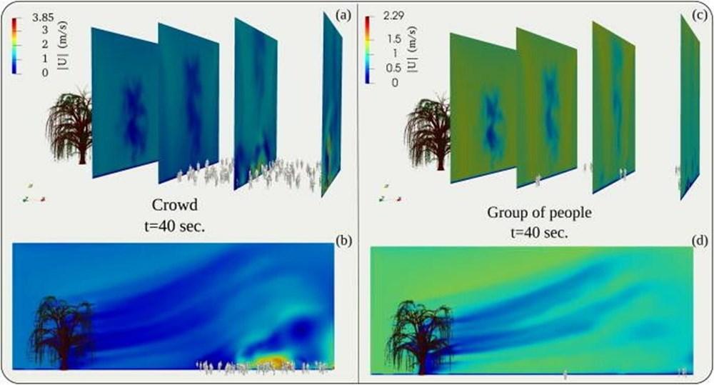 Corona virüs ağaçlardaki polenler aracılığıyla en az 20 metre uzağa yayılıyor - 5