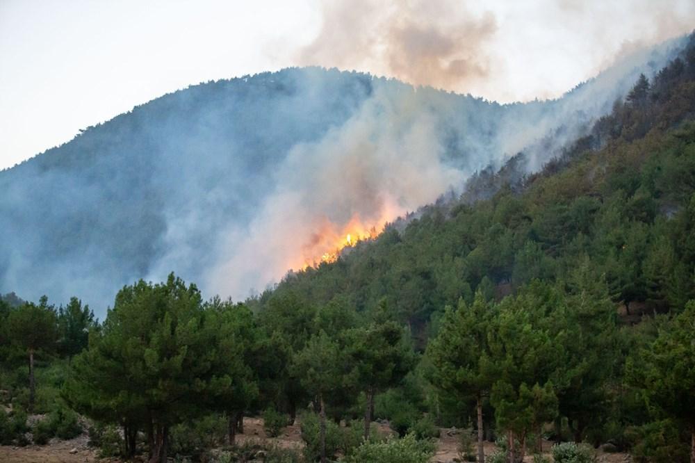 Hatay ve Mersin'de orman yangını - 17