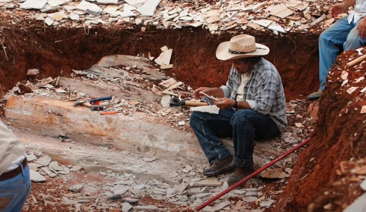 Fosilin keşfedildiği yer