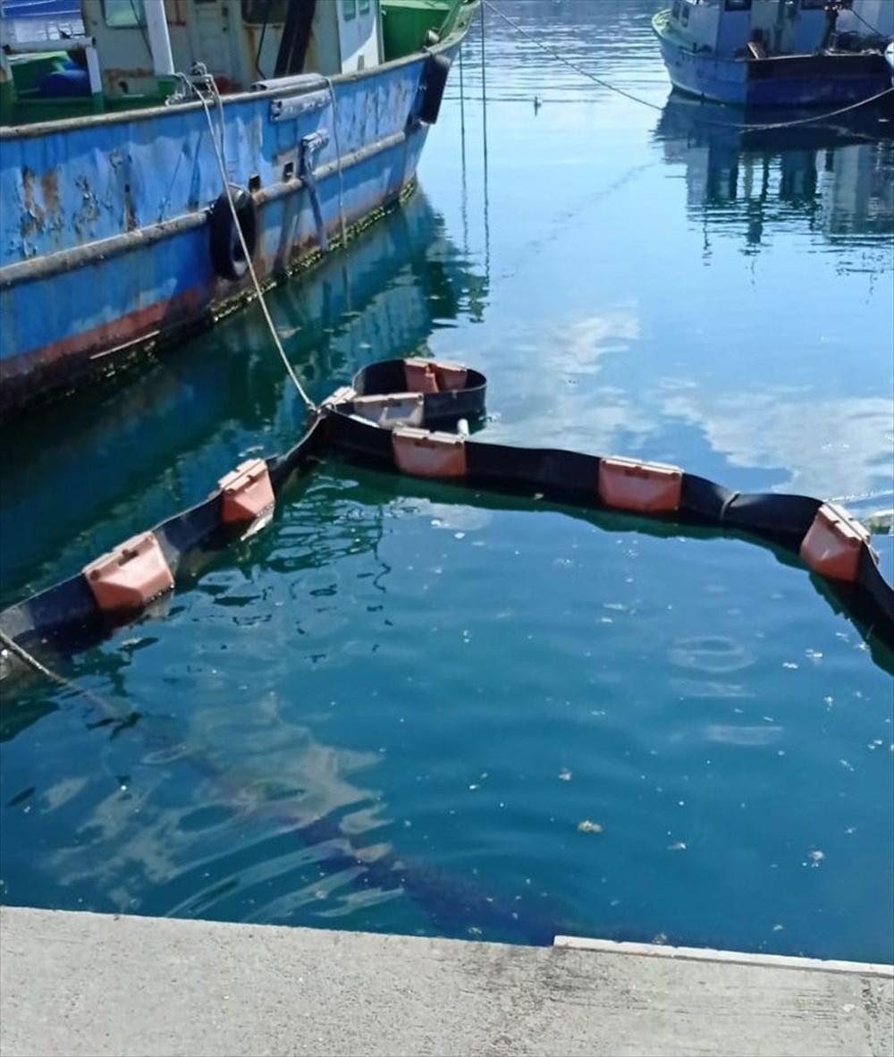 İstanbul Üniversitesi, müsilajı deniz bakterisiyle temizlemeyi başardı - 5