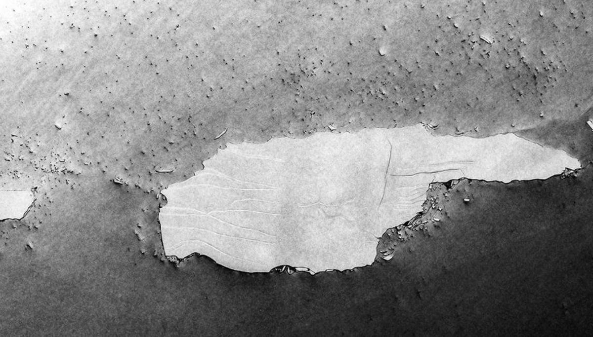 Dünyanın en büyük buzdağı parçalanmaya devam ediyor: Milyonlarca penguen ve deniz canlısı tehdit altında