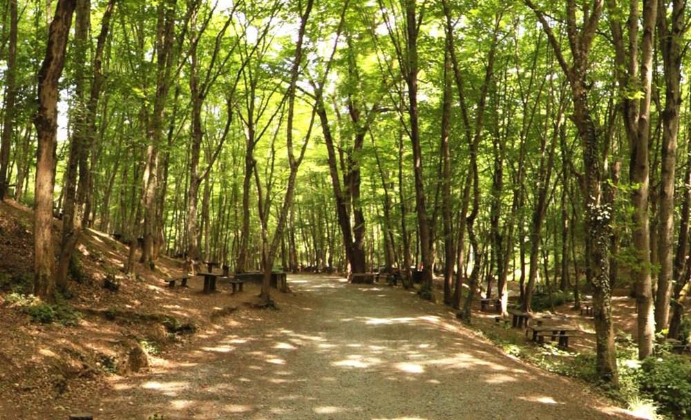 İstanbul'un Tabiat Parkları (İstanbul'daki tabiat parklarının listesi ve isimleri) - 16