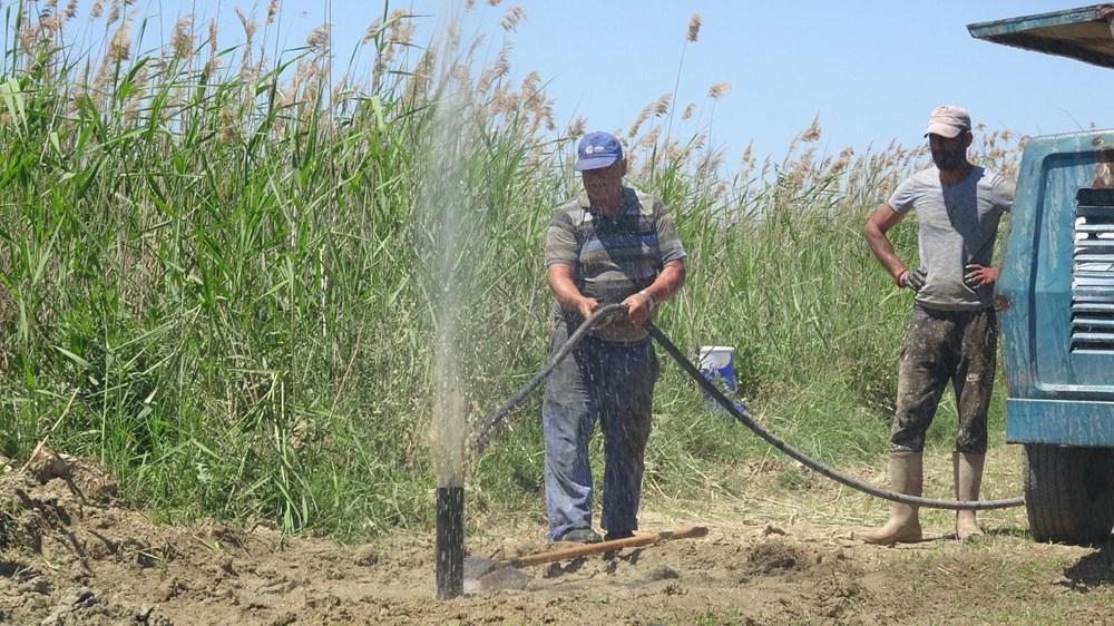 Büyük Menderes kuruyunca çiftçiler yer altı sularına yöneldi - 7
