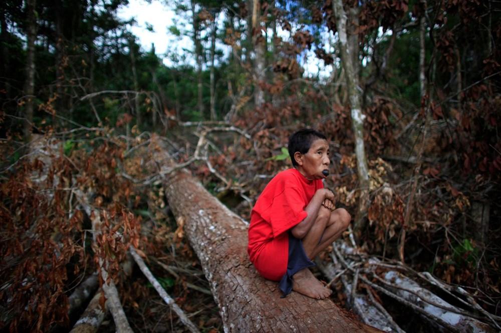 Amazon'un son  kabilesi altın avcıları nedeniyle tehlikede - 8