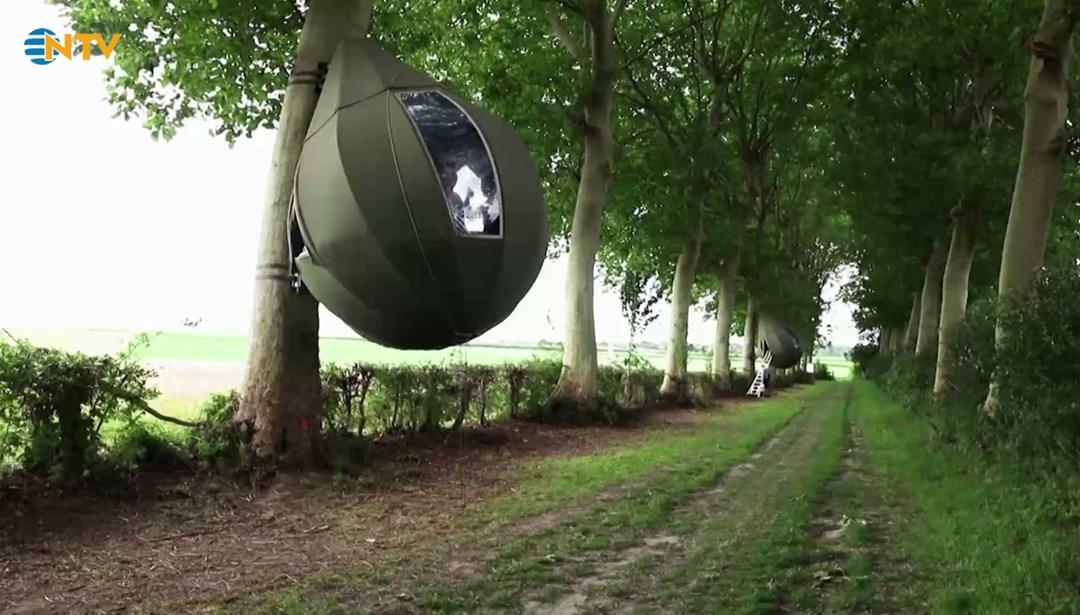 Ağaçlara kurulan çadırlarda tatil