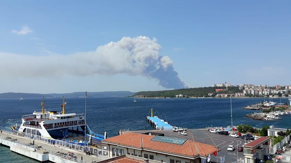 Gelibolu Yarımadası'nda orman yangınında son durum - 4