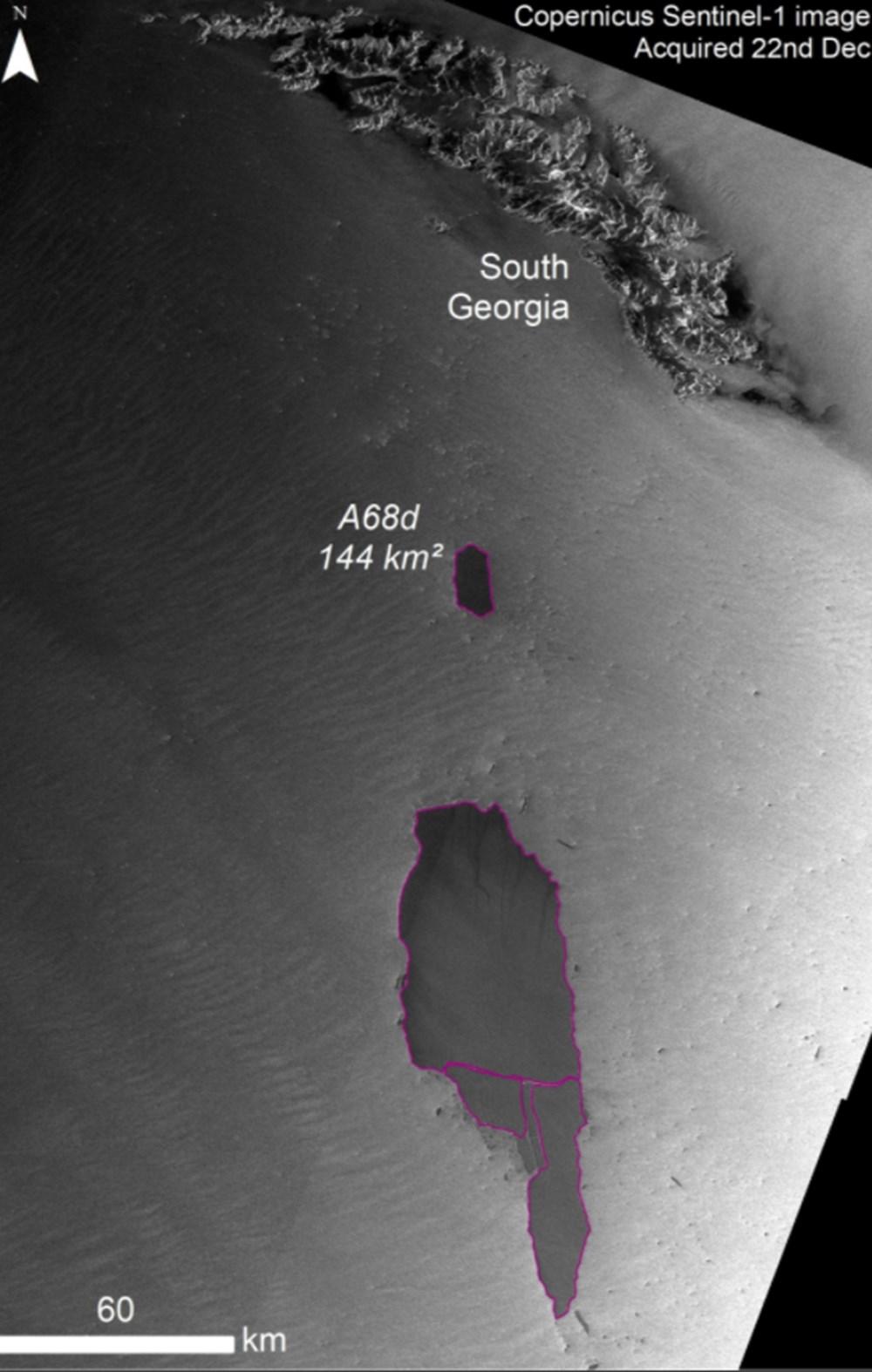 Dünyanın en büyük buzdağı parçalanmaya devam ediyor: Milyonlarca penguen ve deniz canlısı tehdit altında - 5