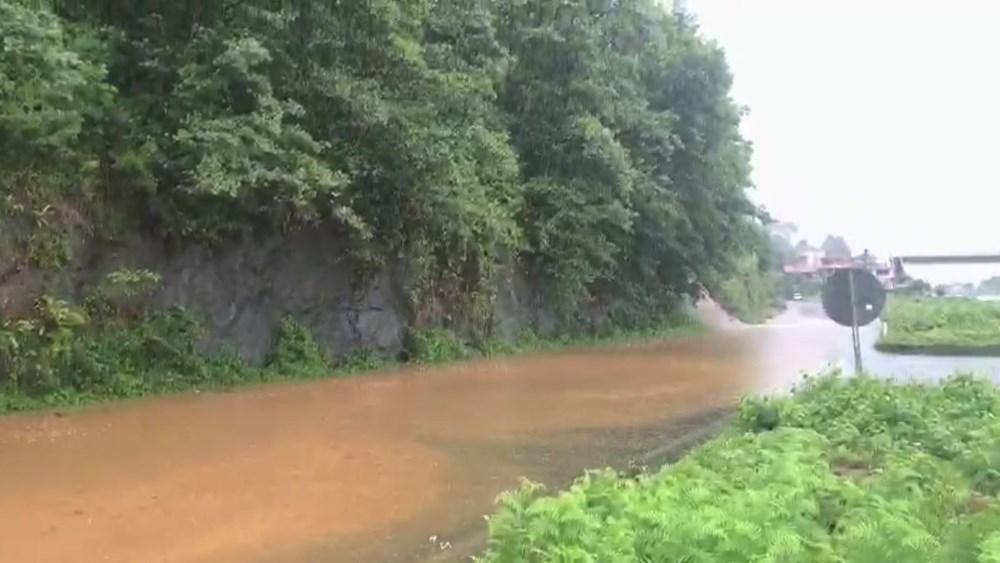 Rize ve Artvin'de beklenen yağış başladı: Arhavi'de iki mahalleyi su bastı - 8