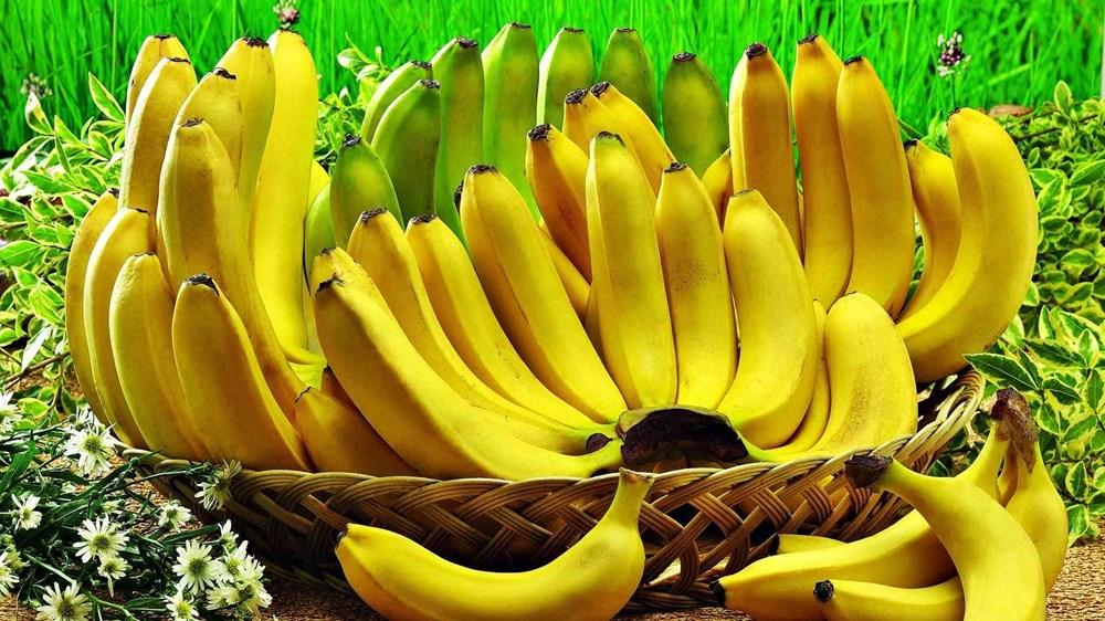 Bağışıklık sistemini güçlendiren besinler (50 sağlıklı besin) - 28