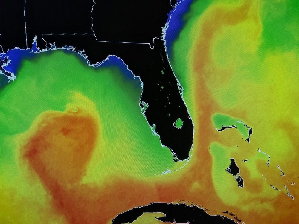 İklim krizi: Bilim insanları, Körfez Akıntısı'nın çöküşüne dair işaretler tespit etti - 3