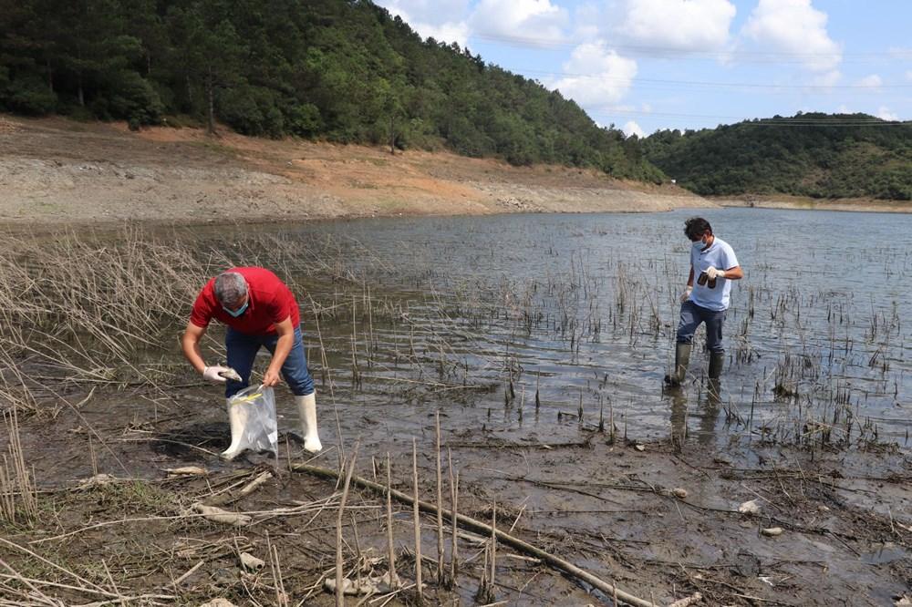 Alibeyköy Barajı'nda balık ölümleri: İnceleme başlatıldı - 9