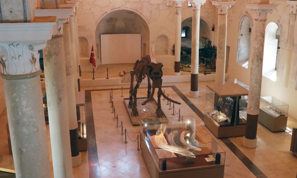 İki milyon yıllık fosiller Burdur Doğa Tarihi Müzesi'nde sergileniyor - 7