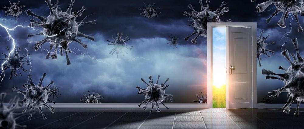 Bilim insanlar açıkladı: Sıcak hava corona virüs vakalarını engelliyor mu? - 5