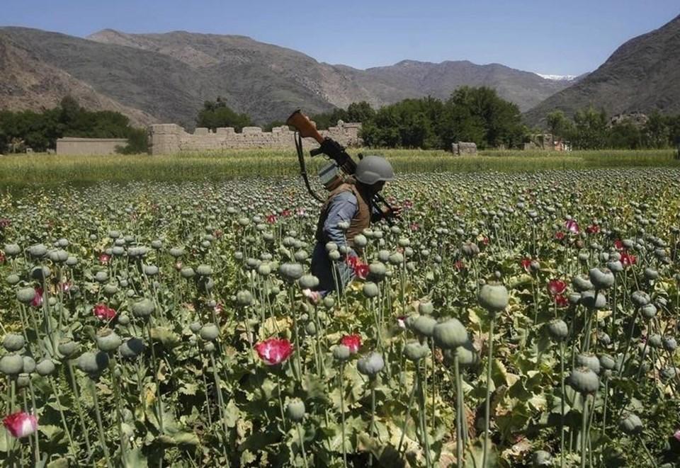 Afganistan'da geniş çaplı ekimlerin yapıldığı afyon tarlaları bulunuyor.