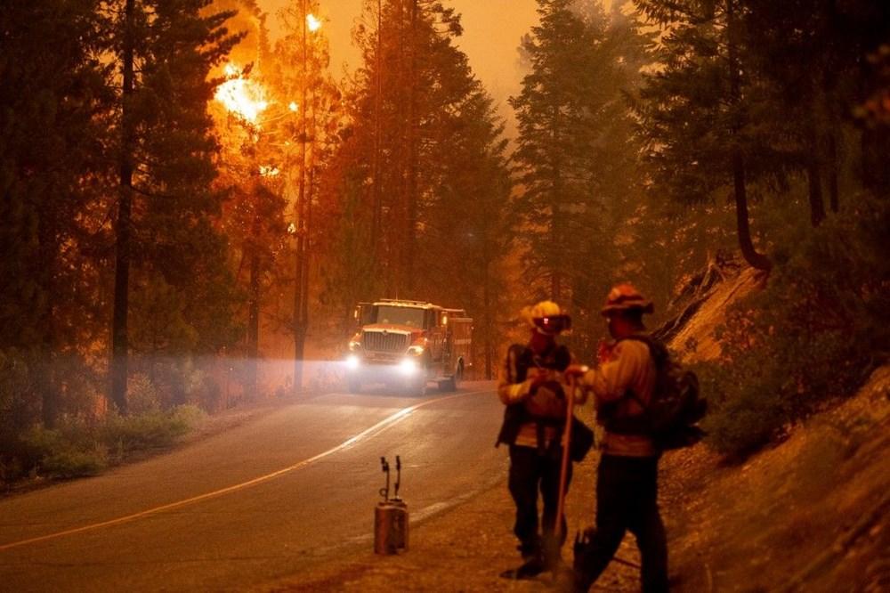 California'da orman yangınları evleri küle çevirdi - 9