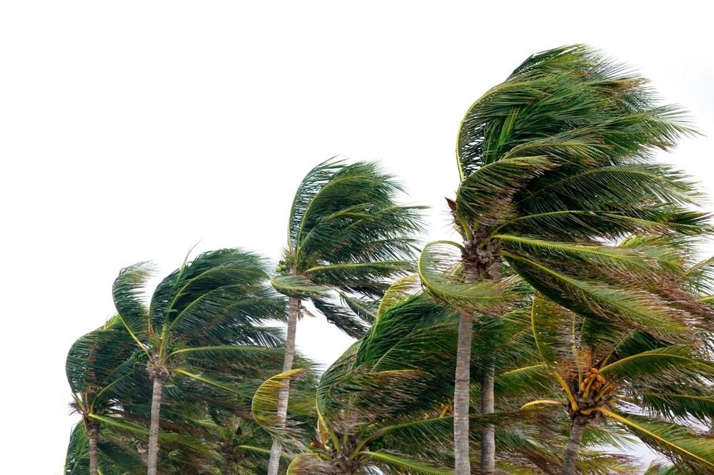Bilim insanlarından Pasifik ada ülkeleri için felaket uyarısı: Yüzyılın sonuna kadar yok olabilirler - 6