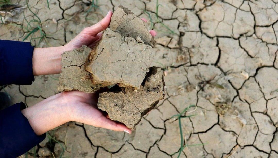 Ziraat Odası raporu: 22 ilde tarımsal kuraklık var, rekolte kaybı kaçınılmaz